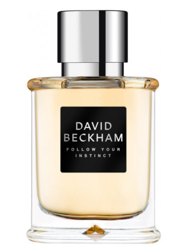 David Beckham Follow Your Instinct - EDT 75 ml